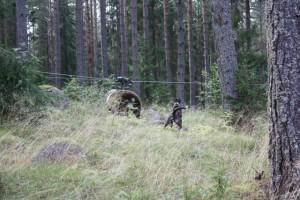 Rut och Björn 003 - Kopia.JPG-for-web-large
