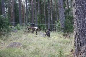 Rut och Björn 004.JPG-for-web-large