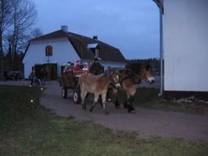 Norma & Makt i Gysinge på julmarknad.jpg-for-web-normal